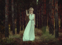 画象妇女在森林里 免版税图库摄影