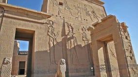 象形文字的雕刻和专栏在一个古老埃及寺庙 股票录像