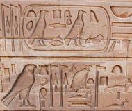 象形文字的面板 库存图片