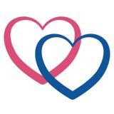象征浪漫史、爱和家庭的桃红色和蓝色交错的心脏 免版税图库摄影
