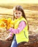 画象有黄色枫叶的小女孩孩子在秋天 库存图片