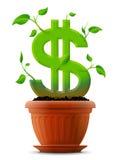 象植物的生长美元标志有在fl的叶子的 免版税库存照片