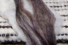 象牙和灰色羊毛 库存图片