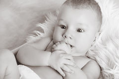画象甜矮小的男婴特写镜头,查寻,染黑  免版税库存照片