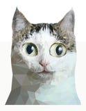 画象的低多猫关闭 免版税库存照片