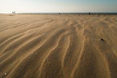象织地不很细沙子-波罗的海与白色沙子的海湾海滩的点心在日落 免版税库存照片