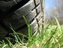 象草的地面轮胎 库存图片