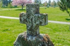 象草的坟园十字架 库存照片