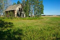 象草的领域的被放弃的房子 免版税库存照片