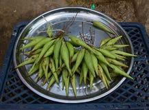 象菜的奇怪的看的玉米或在孟邦,缅甸可能结果实被卖 库存图片