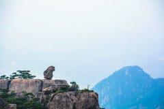 象猴子的石头 免版税图库摄影