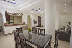 豪华公寓客厅室内设计  库存照片