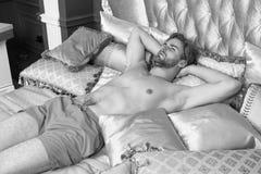 豪华公寓旅馆 放松在与葡萄酒浪漫样式枕头的床上的人 豪华放松手段 可爱的人 图库摄影