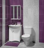 豪华卫生间内部有水槽和洗手间的 库存图片