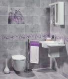 豪华卫生间现代内部有水槽和洗手间的 库存照片