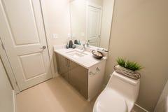 豪华卫生间的室内设计 免版税库存图片