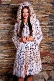 豪华天猫座皮大衣的妇女 免版税图库摄影