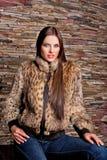 豪华天猫座皮大衣的妇女 库存图片
