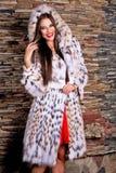 豪华天猫座皮大衣的微笑的愉快的妇女 免版税库存图片