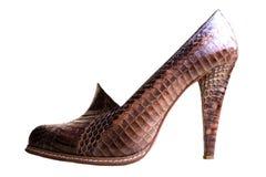 豪华妇女鞋子 真正蛇皮革 时尚对象 免版税库存图片