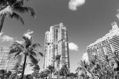 豪华建筑平的修造的迈阿密样式南海滩Flori 免版税库存图片