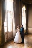 豪华握手的新娘和英俊的新郎在富有的内部背景的华美的窗口在老大厦的 库存照片