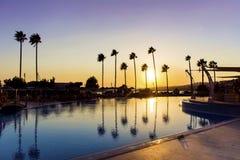 豪华旅馆与棕榈的游泳池在日落 免版税库存图片