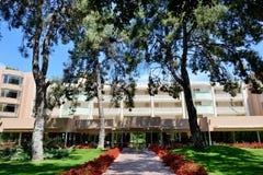 豪华旅馆冷杉木和大厦  免版税库存图片