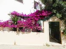 豪华旅馆大厦阳台和大阳台santorini希腊 免版税图库摄影