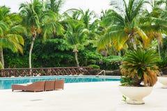 豪华旅馆室外手段水池游泳池。游泳池在海附近的豪华旅游胜地。热带天堂。游泳池我 免版税图库摄影
