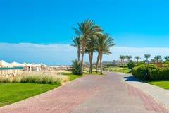 豪华旅馆风景在红海的 图库摄影