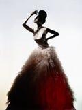 豪华晚礼服的美丽的端庄的妇女 库存图片