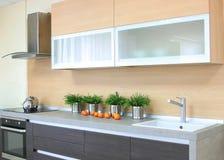 豪华木棕色现代厨房 免版税库存图片