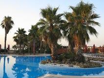 豪华游泳池和棕榈在热带旅馆里 免版税库存图片