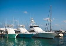 豪华游艇在加勒比海的小游艇船坞停泊了 免版税库存图片
