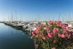 豪华游艇在彻特d ` Azur,法国 免版税图库摄影