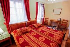 豪华现代旅馆客房内部  库存照片