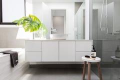豪华白色家庭卫生间称呼与绿叶 库存图片