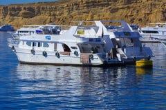 豪华白色马达游艇在反对独特的Ras默罕默德自然的老珊瑚礁蓝天的红海  免版税图库摄影
