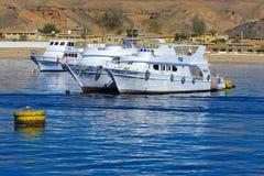 豪华白色马达游艇在反对独特的Ras默罕默德自然的老珊瑚礁蓝天的红海  图库摄影