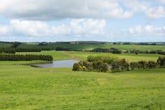 豪华的农田,南维多利亚,澳大利亚 免版税图库摄影