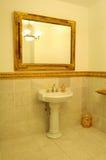豪华的卫生间 库存图片