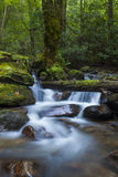 豪华的小瀑布在森林里 免版税库存照片