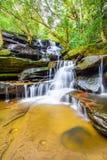 豪华的植被围拢的落下的瀑布 图库摄影