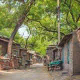 豪华的绿色古老hutong,北京,中国 免版税图库摄影