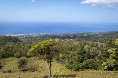 豪华的绿色植被和加勒比海田园诗全景在热带海岛瓜德罗普 免版税库存图片