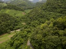 豪华的绿色雨林山的鸟瞰图 免版税图库摄影