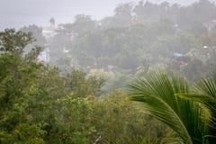 豪华的绿色风景和重的热带雨在加勒比 免版税库存图片