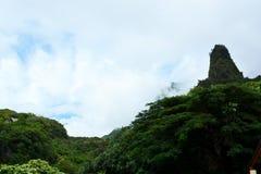 豪华的鲜绿色峰顶 库存图片