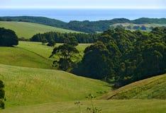 豪华的绿色山牧场地。 库存图片